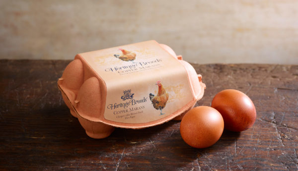 Lifestyle-Copper-Marans