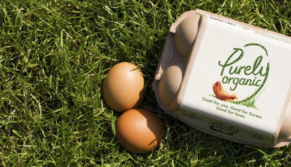 Purely Organic Eggs